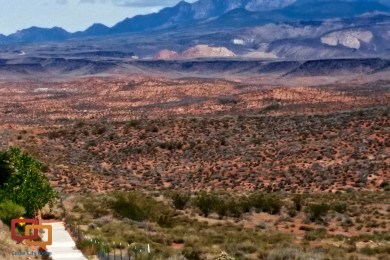 Red Cliffs National Conservation Area | Photo by Julie Applegate, St. George News