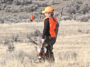 Those 17 years of age and younger will be the first hunters to take a pheasant in Utah this fall, location unspecified, Nov. 8, 2008 | Photo courtesy of Alan Peterson, Utah Division of Wildlife Resources, St. George News