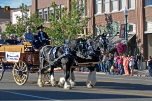 Cedar City Livestock & Heritage Festival, downtown Cedar City, Utah, Oct. 25, 2014   Photo by Leanna Bergeron, St. George News