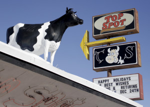 The famous cow sitting atop Top Spot, Cedar City, Utah, Dec. 17, 2015 | Photo by Carin Miller, St. George News