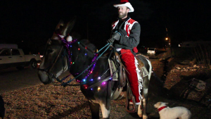 A mix of around 20 or so horses, mules and donkeys clip-clapped through a part of Hurricane between 1760 West and 180 South in Hurricane Wednesday night as their riders made stops at various homes and sang carols, Casey Lofthouse (pictured) was one of the organizers of the event, Hurricane, Utah, Dec. 23, 2015 | Photo by Mori Kessler, St. George News