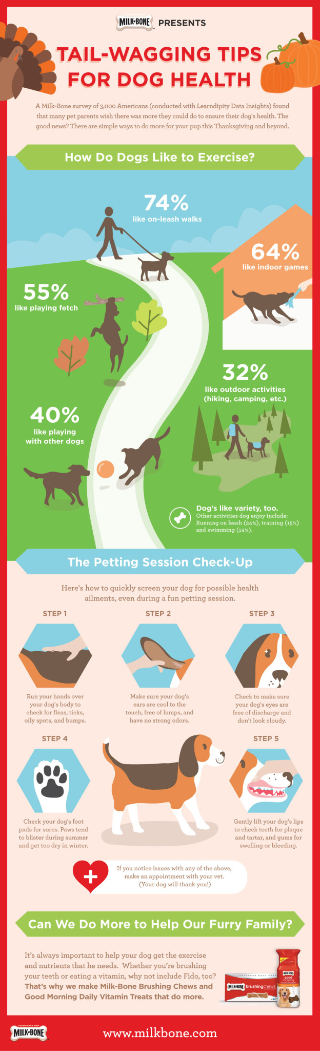 Holiday dog exercises | Inforgraphic courtesy of Milk-Bone, St. George News | Click image to enlarge