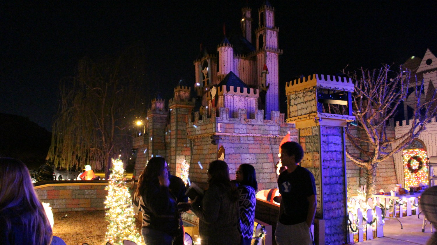 St George family wins ABCs The Great Christmas Light Fight