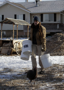 It takes multiple buckets of feed to feed the chickens, geese, ducks and other critters residing on the farm, Red Acre Farm CSA, Cedar City, Utah, Jan. 13, 2016 | Photo by Carin Miller, St. George News