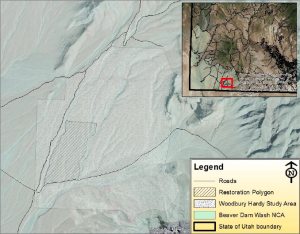 Map of 100-acre plot within the Red Cliffs National Conservation Area, Washington County, Utah | Image courtesy of Washington County Habitat Conservation Advisory Committee