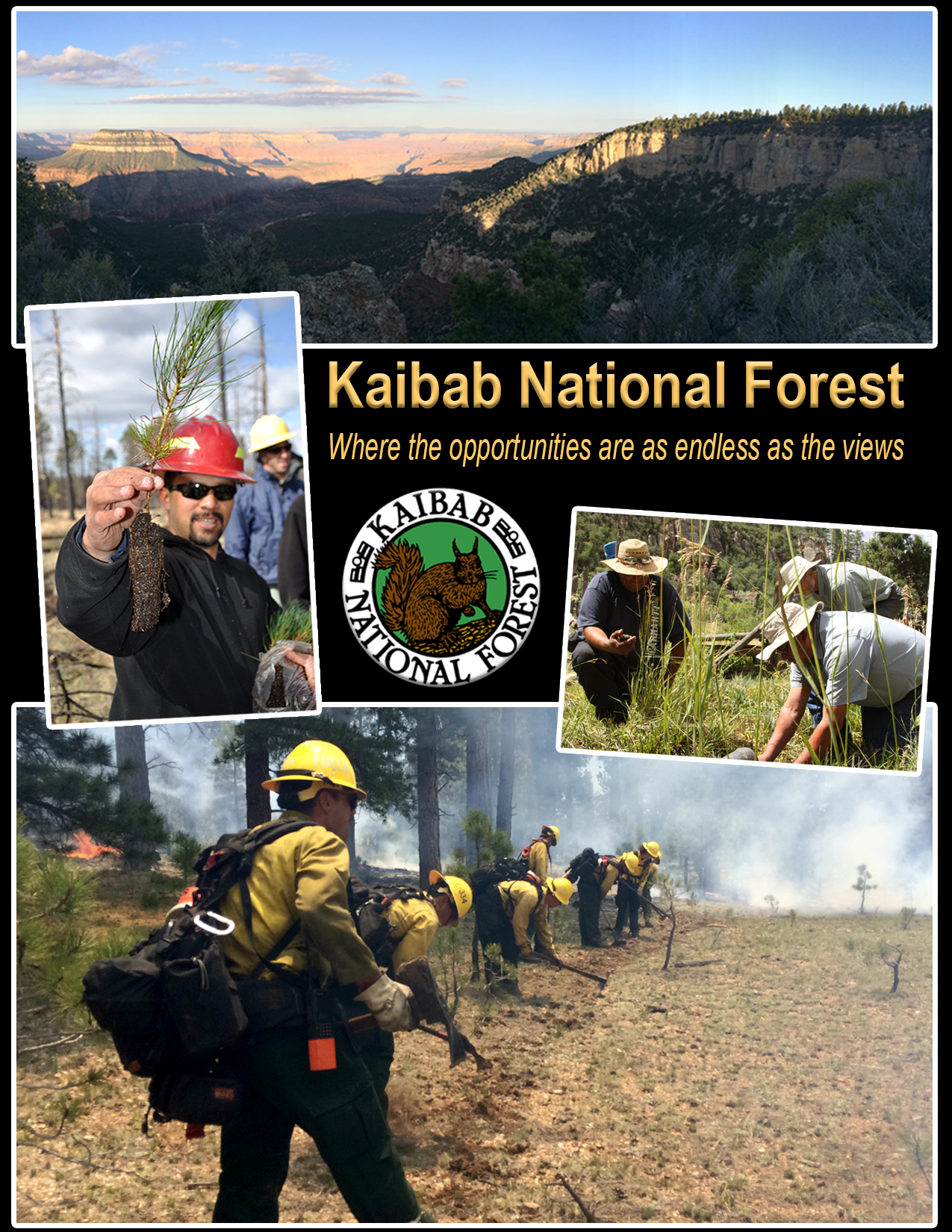 Flyer courtesy of Kaibab National Forest, St. George News