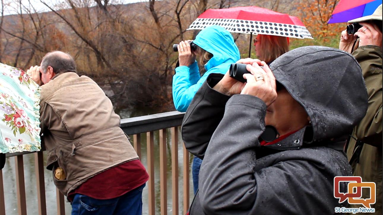 Birdwatchers surveying the pond next to the Tonaquint Nature Center, Jan. 30, 2015 | Photo by Leanna Bergeron, St. George News