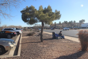 Will Layman is holding a protest vigil in front of the St. George BLM office on E. Riverside Drive. Feb 9, 2016 | Photo by Sheldon Demke, St. George News