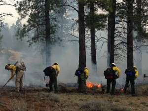 Wildland Firefighters, Area not specified, Utah | Photo courtesy of WIWF, Dixie National Forest, St. George News