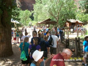 Crowds gathering at the Visitors Center at Zion on August 8, 2015. | Photo courtesy Zion National Park, St. George News