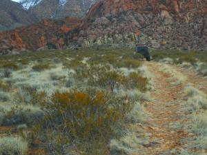 Winter 4x4 Jamboree participants travel to Lone Pine Arch, Gunlock, Utah, Jan. 22, 2016 | Photo courtesy of Desert RATS