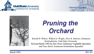 """""""Pruning the Orchard"""", University of Utah Extension, March, 1994,"""