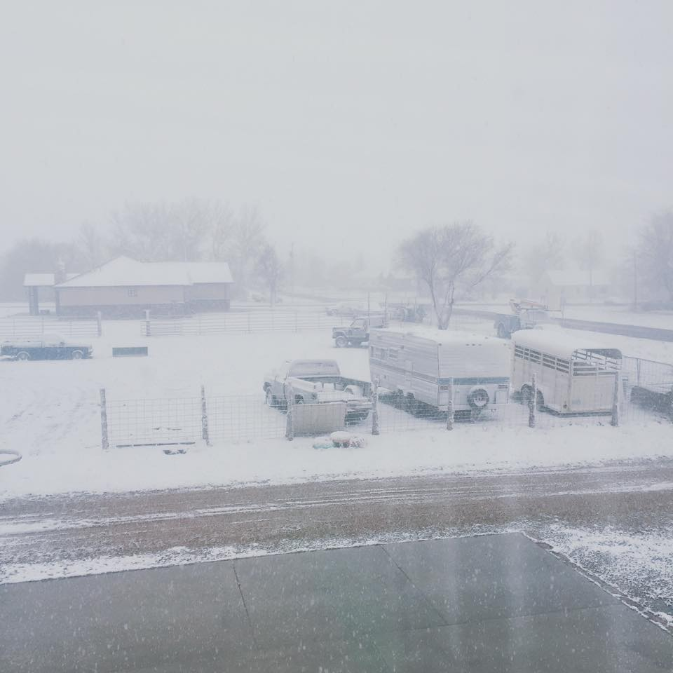 Morning snow in Meadow, Utah, March 26, 2016 | Photo courtesy of Cody Hafen, St. George News