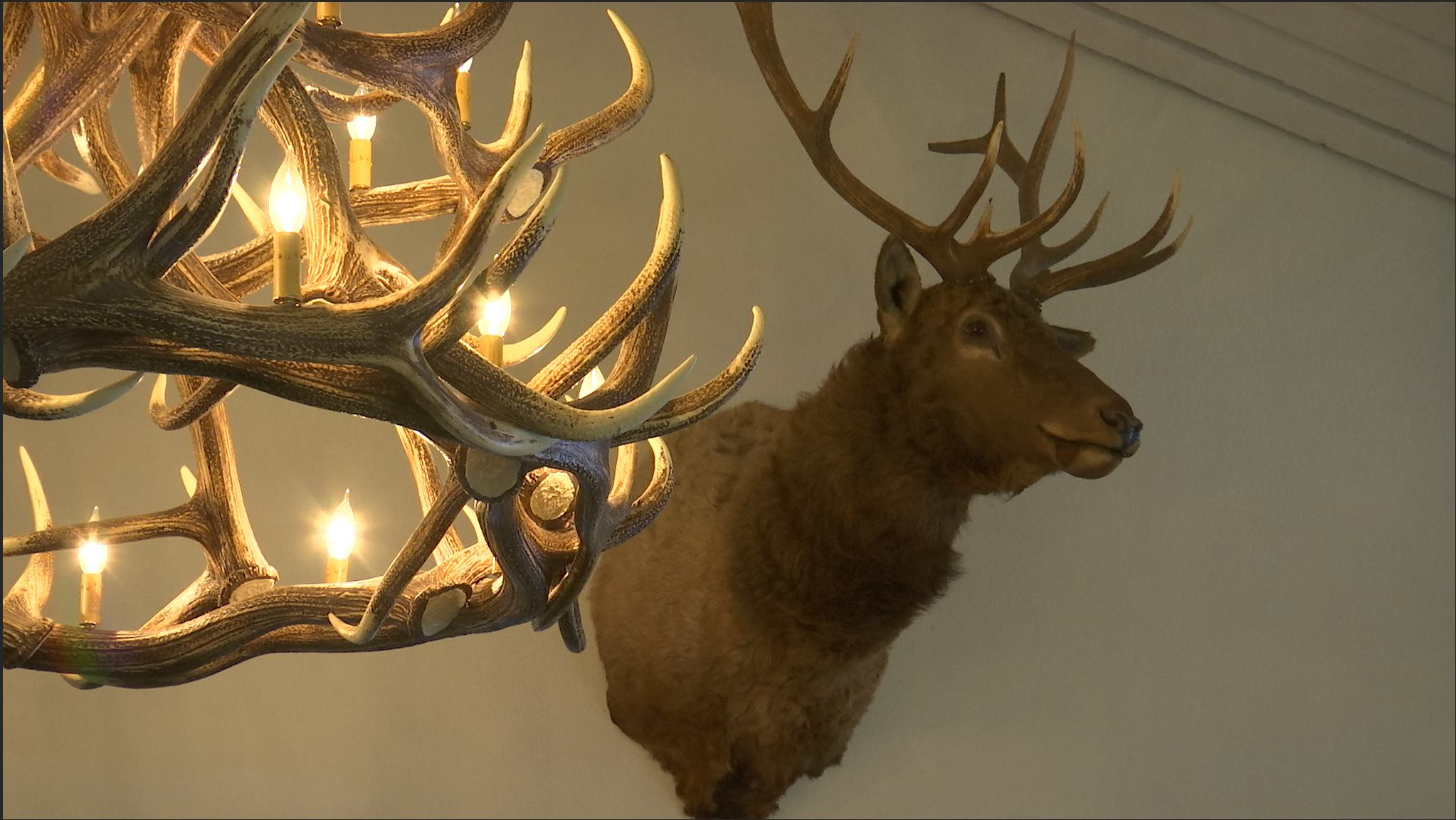 Antler chandelier and Elk Head at the Dixie Elks Lodge in St. George, Mar. 3, 2016 | Photo by Sheldon Demke, St. George News