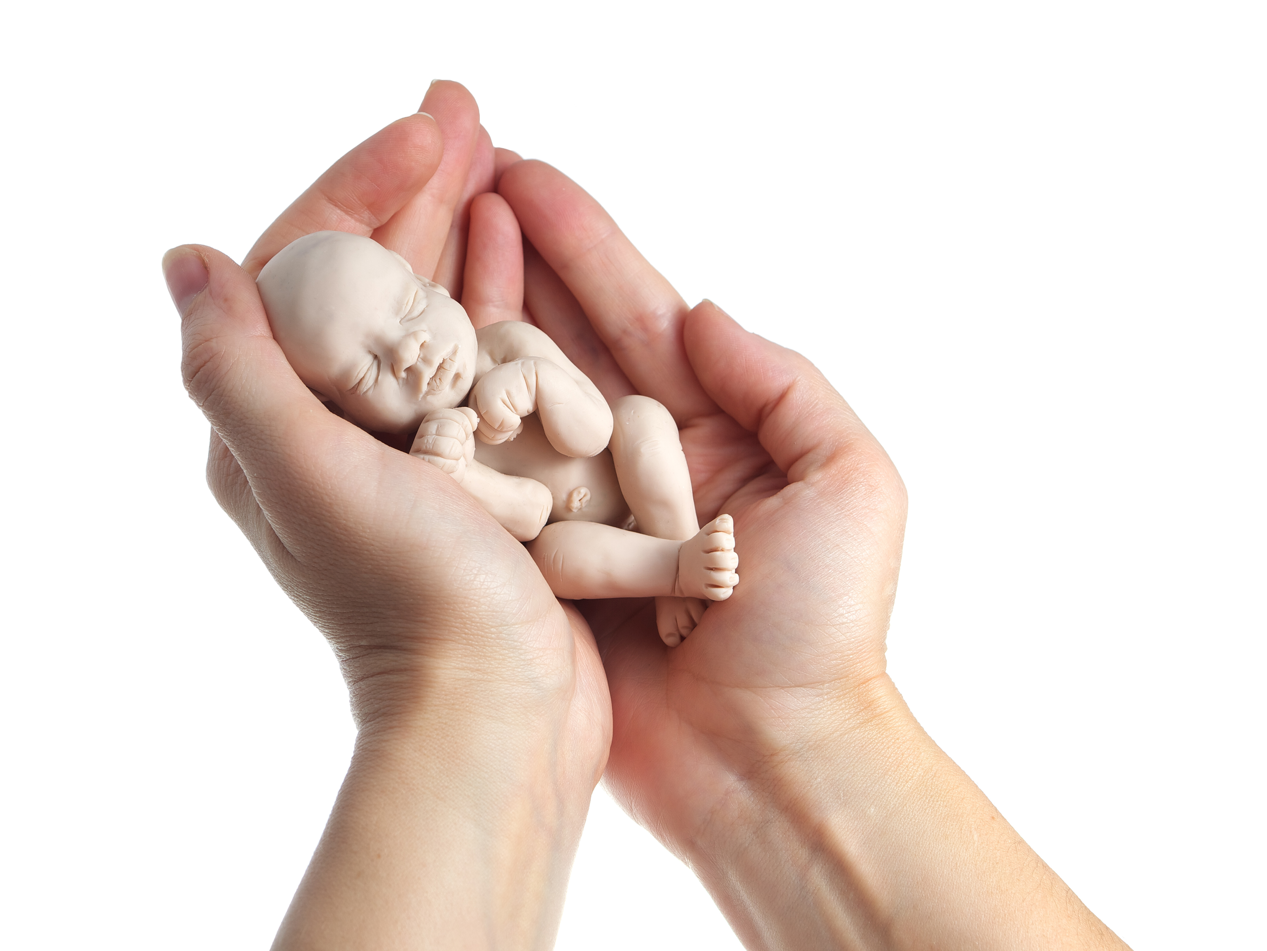 Embryo in a woman's hand shown for illustration purposes | Stock image, St. George News