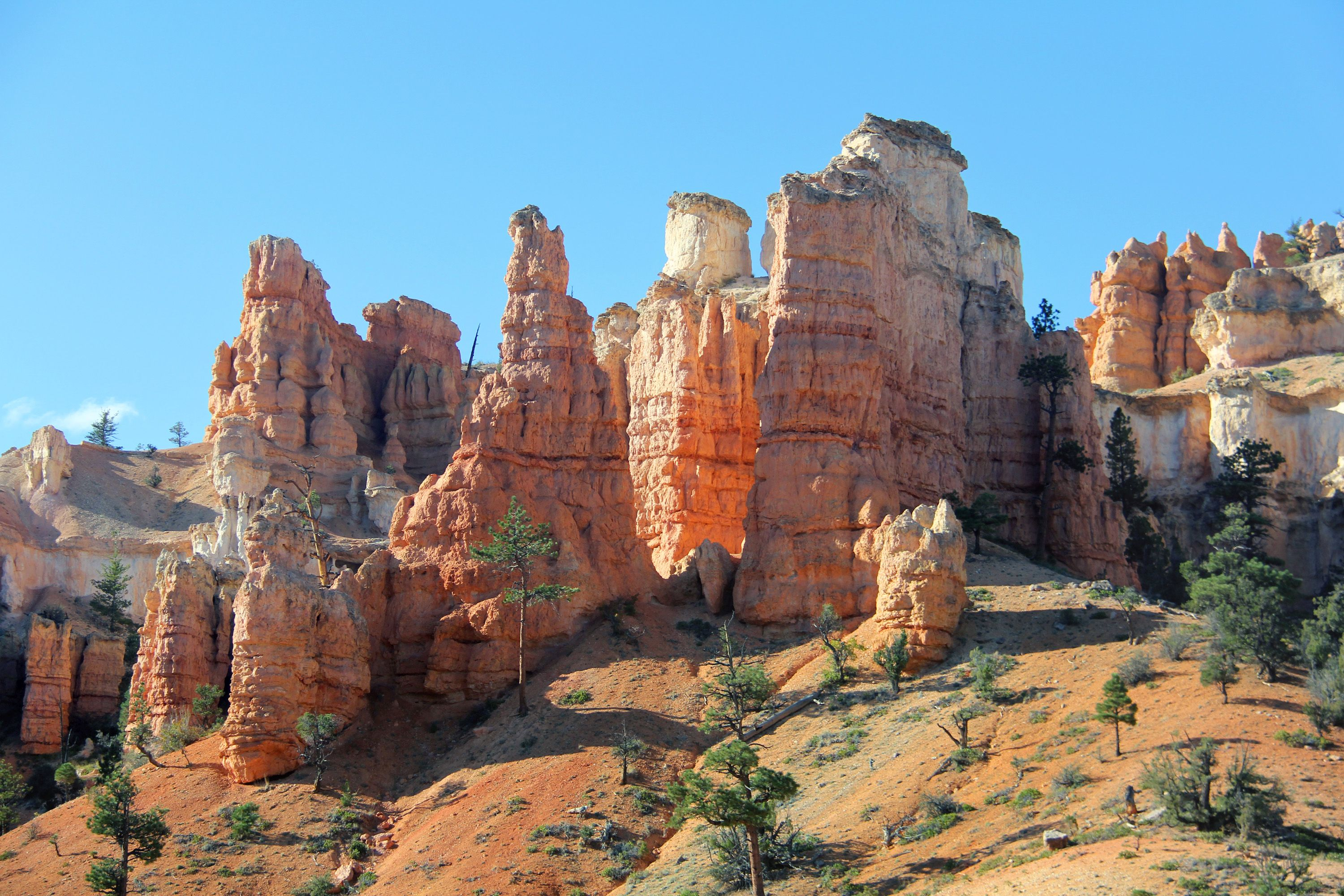 Hoodoos at Bryce Canyon National Park, undated | Photo courtesy of Ruby's Inn, St. George News