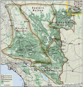 Map of desert tortoise recovery areas | Image courtesy of Washington County, St. George News