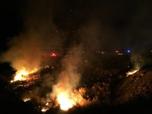 An agricultural burn spread out of control shutting down Interstate 15, Littlefield, Arizona, Feb. 29, 2016 | Photo by Kimberly Scott, St. George News