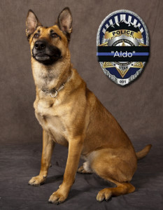 Unified Police K-9 Officer Aldo was shot and killed April 28 in the line of duty, photo location and date unspecified | Photo courtesy of Unified Police Department, St. George News