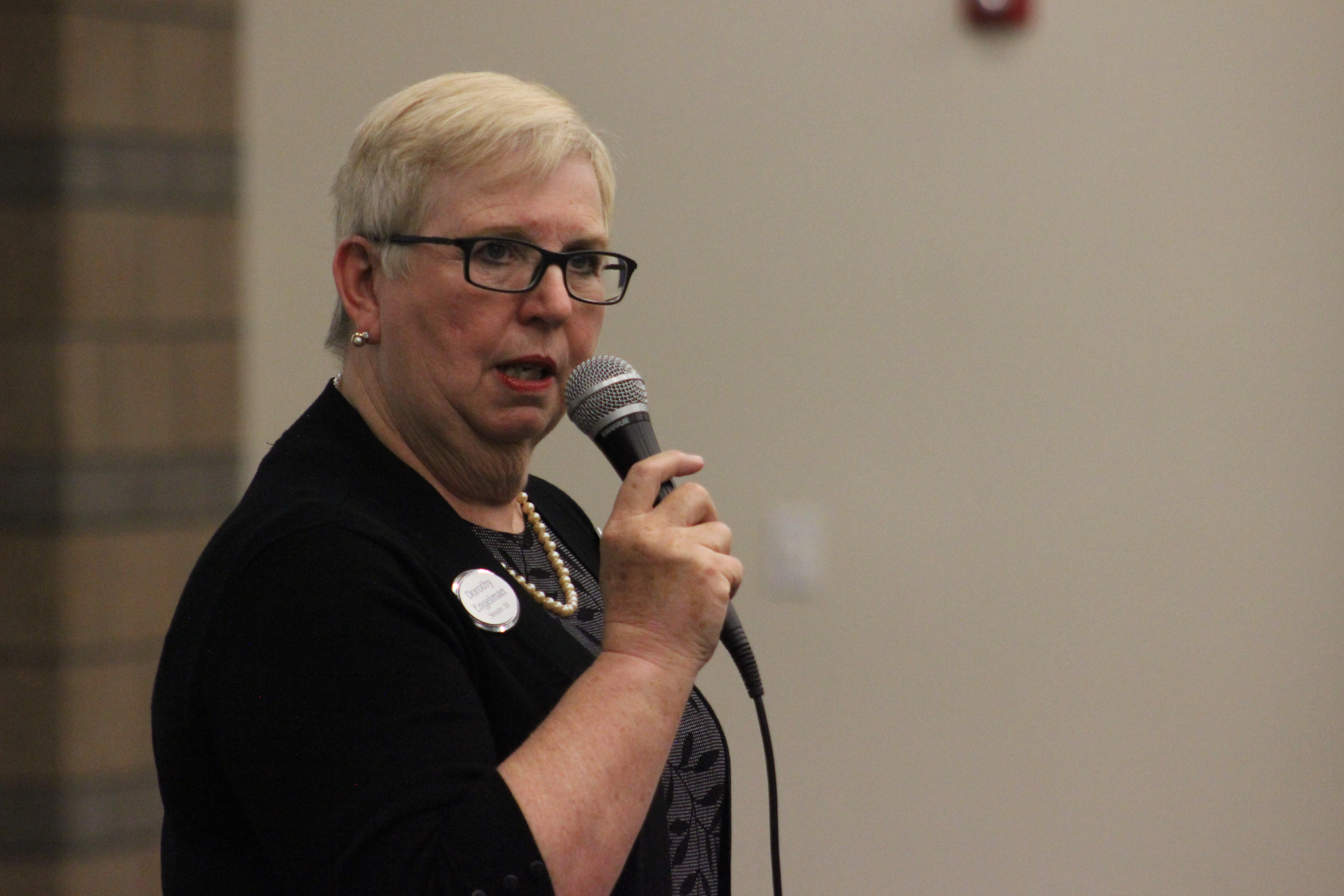Utah Senate candidate Dorothy Engelman discusses her candidacy at the Washington County Democratic covention at Tonaquint Intermediate School in St. George, Utah, April 2, 2016 | Photo by Don Gilman, St. George News