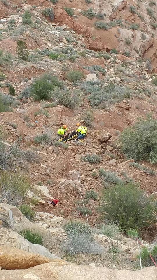 Dog Rescue St George Utah