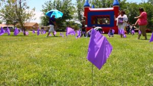 Flags commemorating foster children were planted on the lawn of Vernon Worthen park during the Utah Foster Care March for Kids event in St. George, Utah, May 27, 2016 | Photo by Don Gilman, St. George News