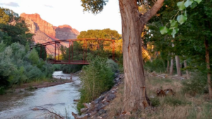A photograph of the historic Rockville Bridge by photographer Bob Ford will be on display at the Canyon Community Center in Springdale, Utah. Date not specified | Photo courtesy of the Historic Rockville Bridge Fundraising Committee, St. George News