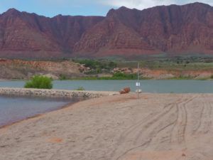 A ribbon-cutting ceremony was held Thursday for Fire Lake Park, which is now open at Ivins Reservoir, Ivins, Utah, May 26, 2016   Photo by Julie Applegate, St. George News