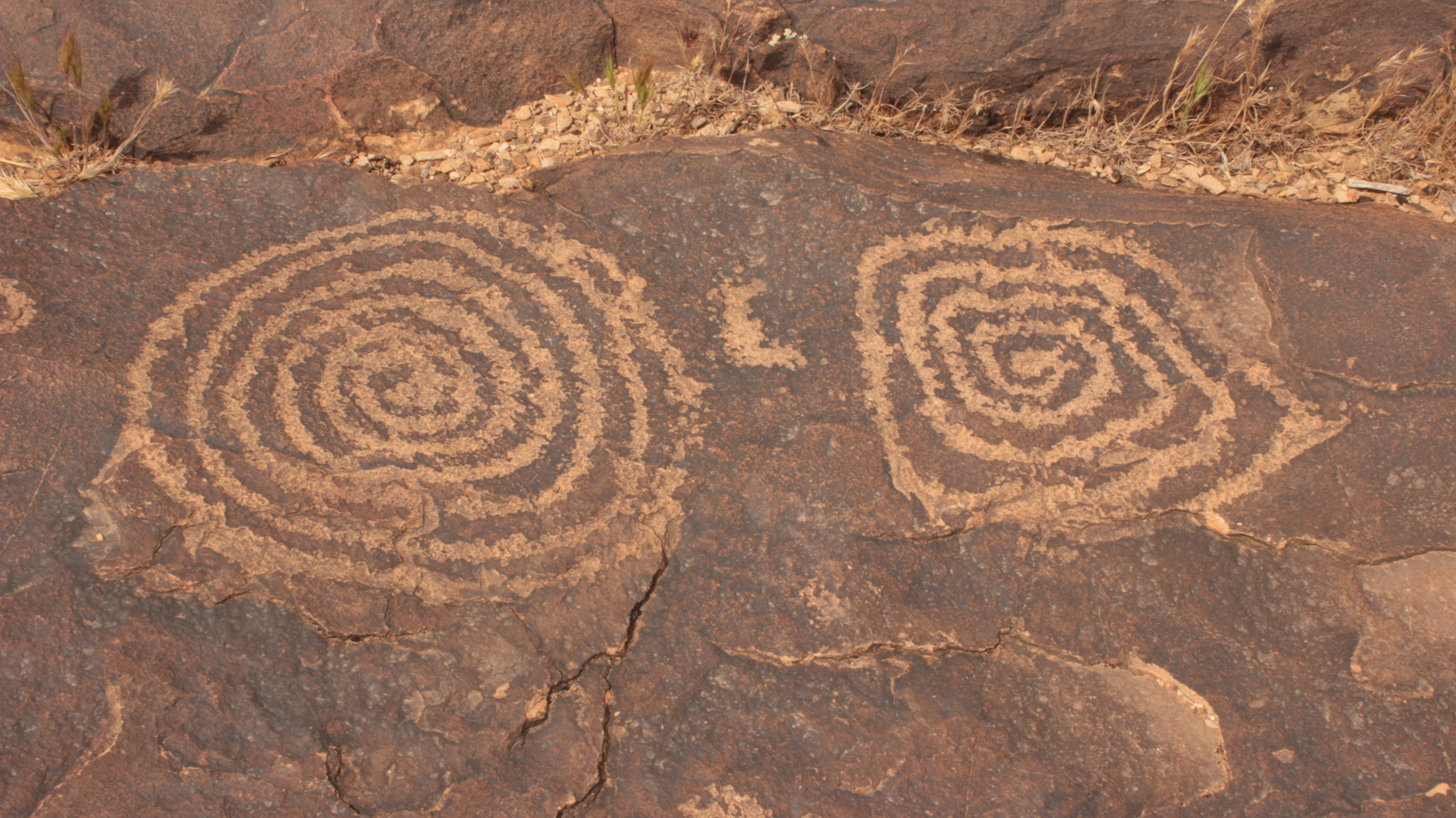 Petroglyphs at the Land Hill site in Santa Clara are some of the cultural resources the BLM is tasked with protecting, St. George, Utah, May 5, 2016 | Photo by Don Gilman, St. George News
