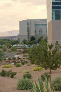Water-wise plants are an important part of water conservation, Dixie Regional Medical Center grounds, date unspecified | Photo courtesy Washington County Water Conservancy District, St. George News