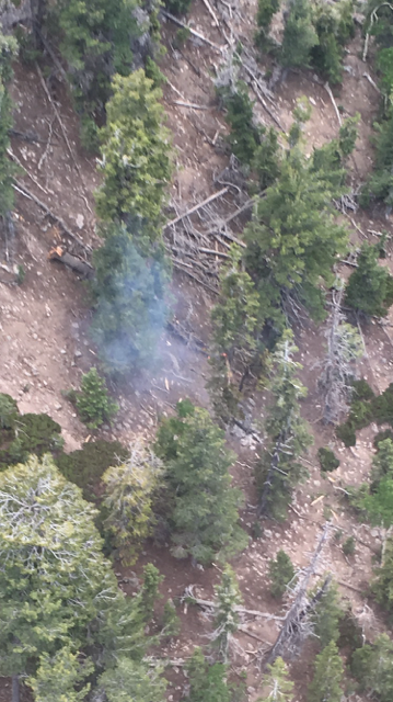 Aerial view of the Saddle Fire taken when the blaze was initially reported, Pine Valley Mountains Wilderness, June 13, 2016 | Photo courtesy Color Country Interagency Fire Center, St. George News
