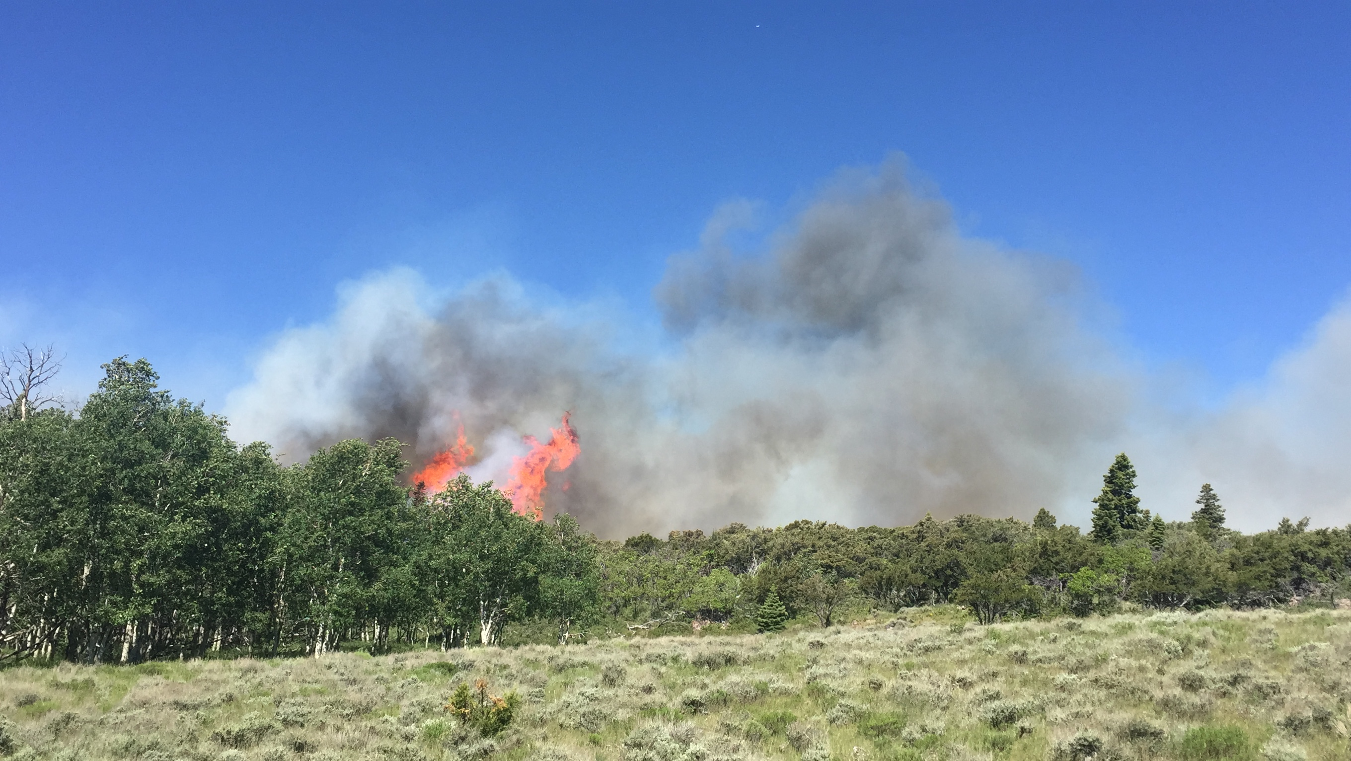 Photo of the Aspen Fire in Dixie National Forest, Utah, June 16, 2016 | Photo courtesy of Dixie National Forest, St. George News