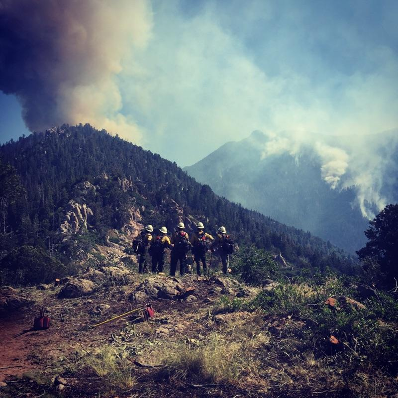 Alta Hotshots working on the Saddle Fire above Pine Valley on the Dixie National Forest, Washington County, Utah, June 24, 2016 | Photo courtesy of Alta Hotshots, St. George News