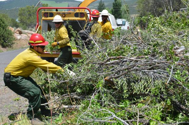 Fire crew clearing woody debris near the Saddle Fire on the Dixie National Forest, Washington County, Utah, June 30, 2016 | Photo courtesy of InciWeb, St. George News