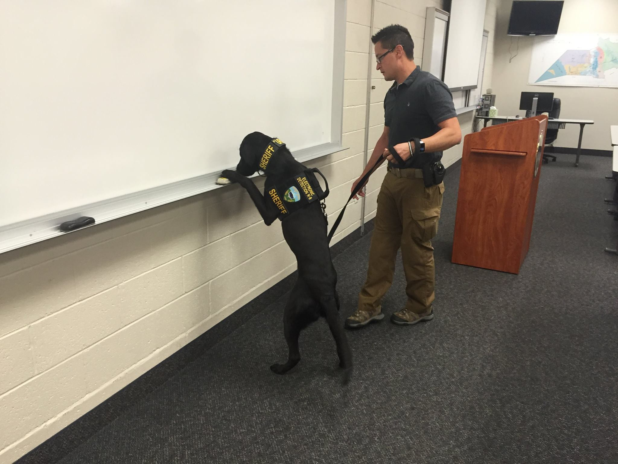 URL, a K-9 specially trained to sniff out electronic storage devices, and his handler, Weber County Sheriff Detective Cam Hartman, Odgen, Utah, June 21, 2016 | Photo courtesy of the Weber County Sheriff's Office, St. George News