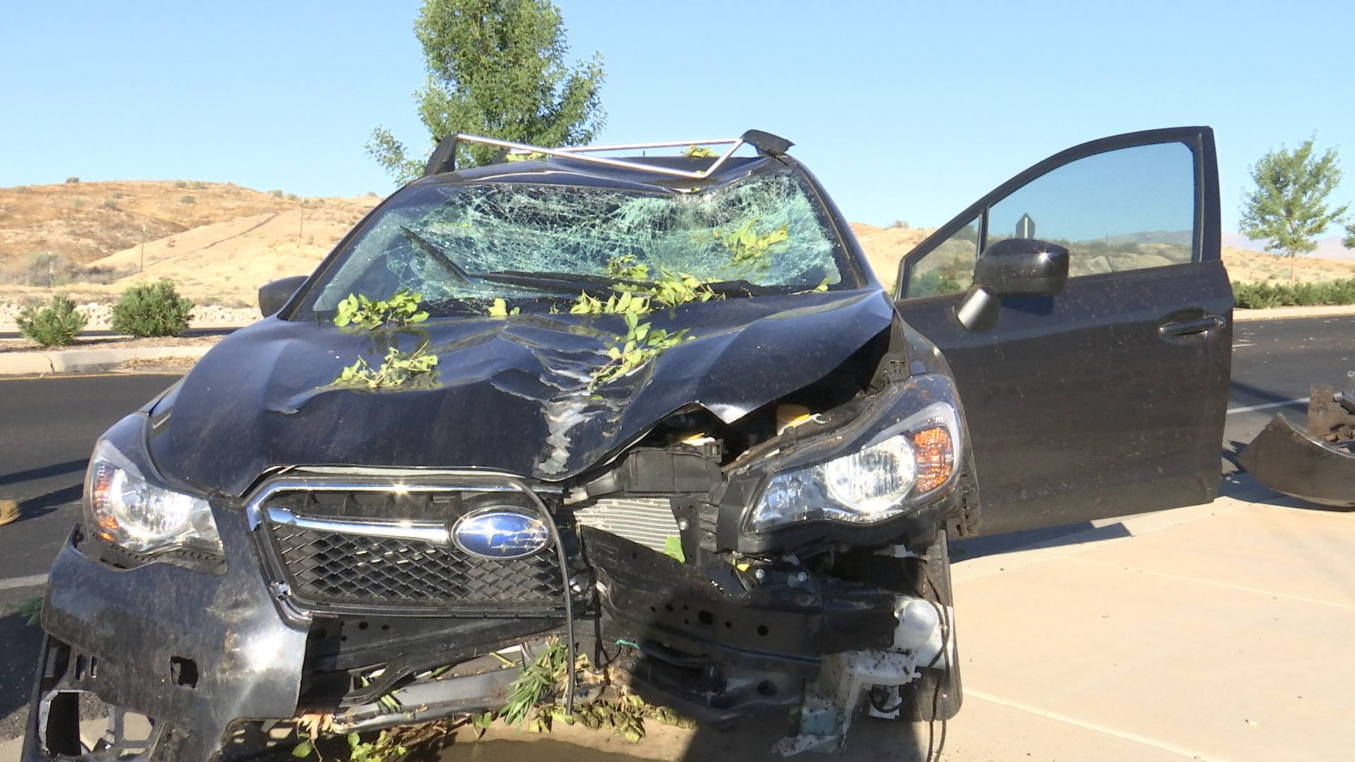 A juvenile driver lost control of his Subaru on Brigham Road, crashing through the center median and taking out several trees before coming to rest in the opposite lanes, St. George, Utah, July 23, 2016 | Photo by Sheldon Demke, St. George News