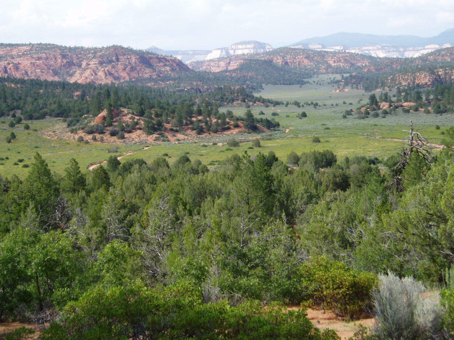 A 17-year-old boy was rescued by helicopter after falling 50 feet while free climbing in the Canaan Mountain Wilderness near Hildale, Utah, photo undated | Image courtesy Bureau of Land Management, St. George News