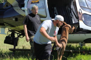 Officers and their K-9s practice getting in and out of the helicopter this week for K-9 training on Kolob Mountain, Utah, July 12, 2016 | Photo by Tracie Sullivan, St. George/Cedar City News