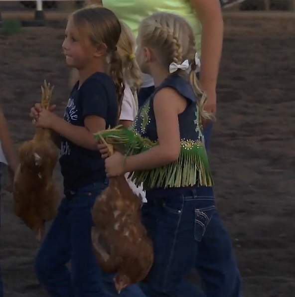 Two cowgirls carry chickens they caught in the chicken race Friday night. The race had spectators in cheers and tears – of laughter at the American Legion and Sons of American Legion Enterprise Rodeo. Enterprise, Utah, July 22, 2016 | Photo by Sheldon Demke, St. George News