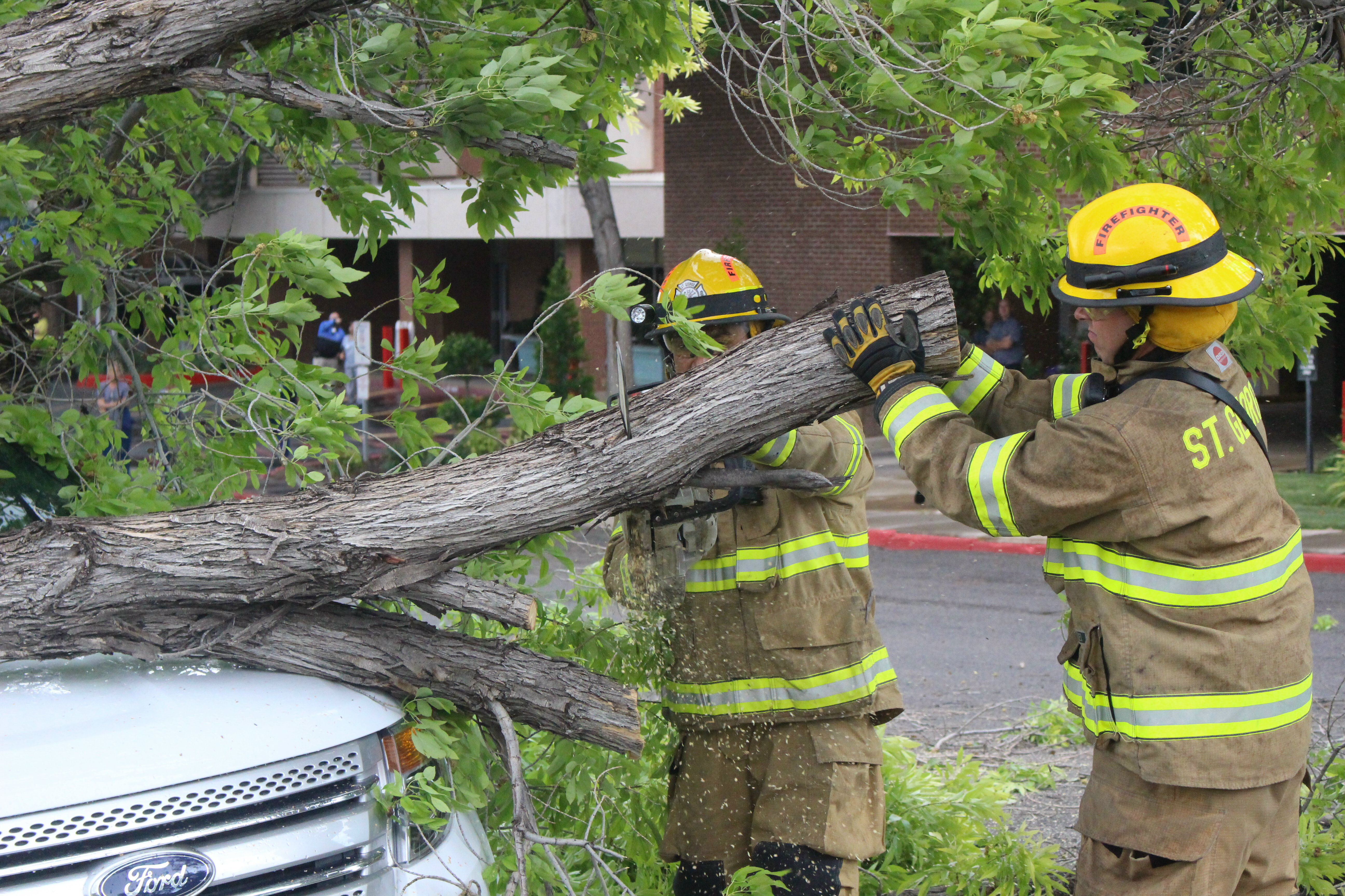 Firefighters responded to the call of a downed power line and a tree crashing unto an SUV on 500 South by the 400 East Campus of Dixie Regional Medical Center. The incident was just one of a handful of instances caused by a passing thunder storm that snapped tree limbs and power lines in other parts of the city, St. George, Utah, July 1, 2016 | Photo by Mori Kessler, St. George News