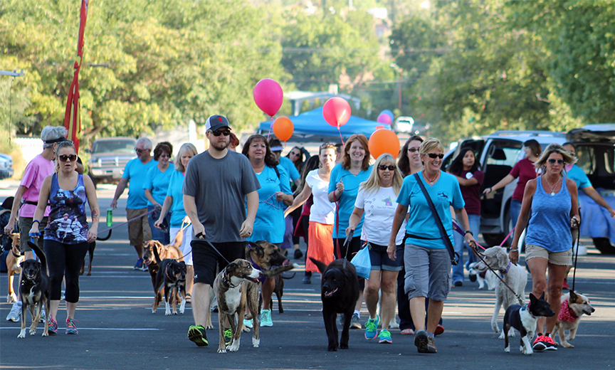 Participants in the 2015 benefit Walk for the Animals, Hurricane, Utah, September 12, 2016 | Photo courtesy of BAM, St. George News
