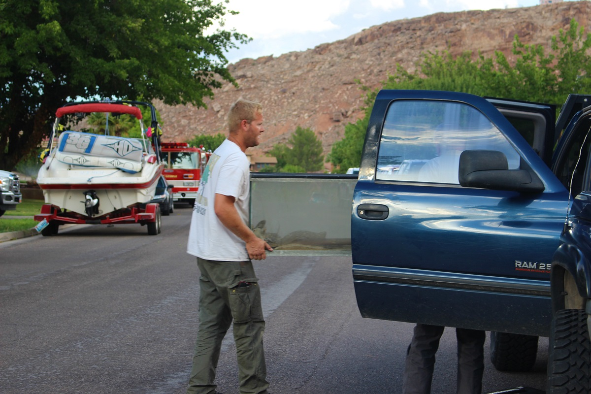 A pet iguana was found safe in his tank in the basement during a search of the home following a fire, St. George, Utah, Aug. 10, 2016 | Photo by Cody Blowers, St. George News