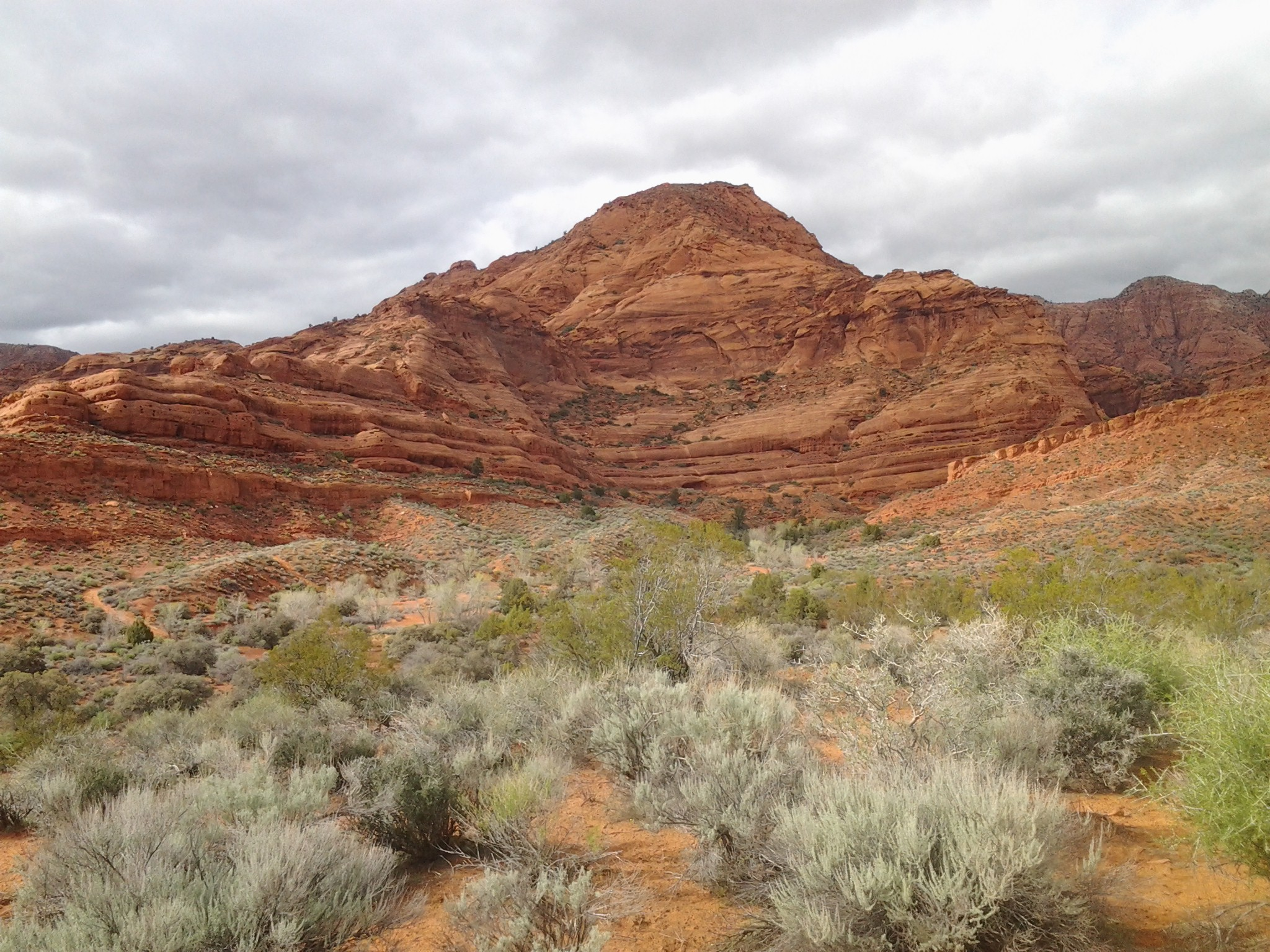 The scenic red rock vista seen along the Aztec Trail, Red Cliffs Desert Reserve near Harrisburg, Utah| photo by Reuben Wadsworth, St. George News