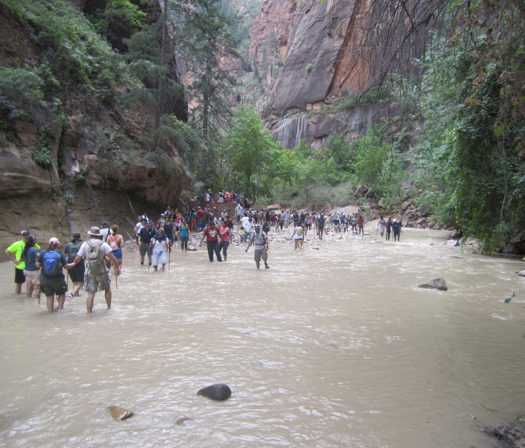 Hikers in The Narrows in Zion National Park over the 2015 Labor Day weekend, Springdale, Utah, Sept. 6, 2015 | Photo courtesy of Zion National Park, St. George News
