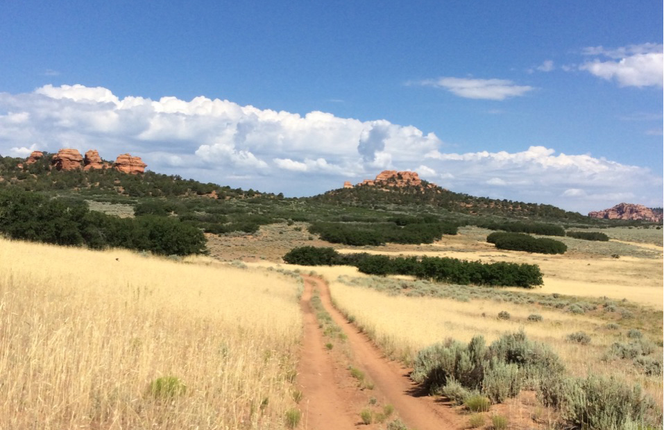 The State Institutional Trust Lands Administration is selling this 200-acre parcel in Cave Valley near Kolob Terrace Road at an auction Oct. 18 | Photo courtesy of SITLA, St. George News