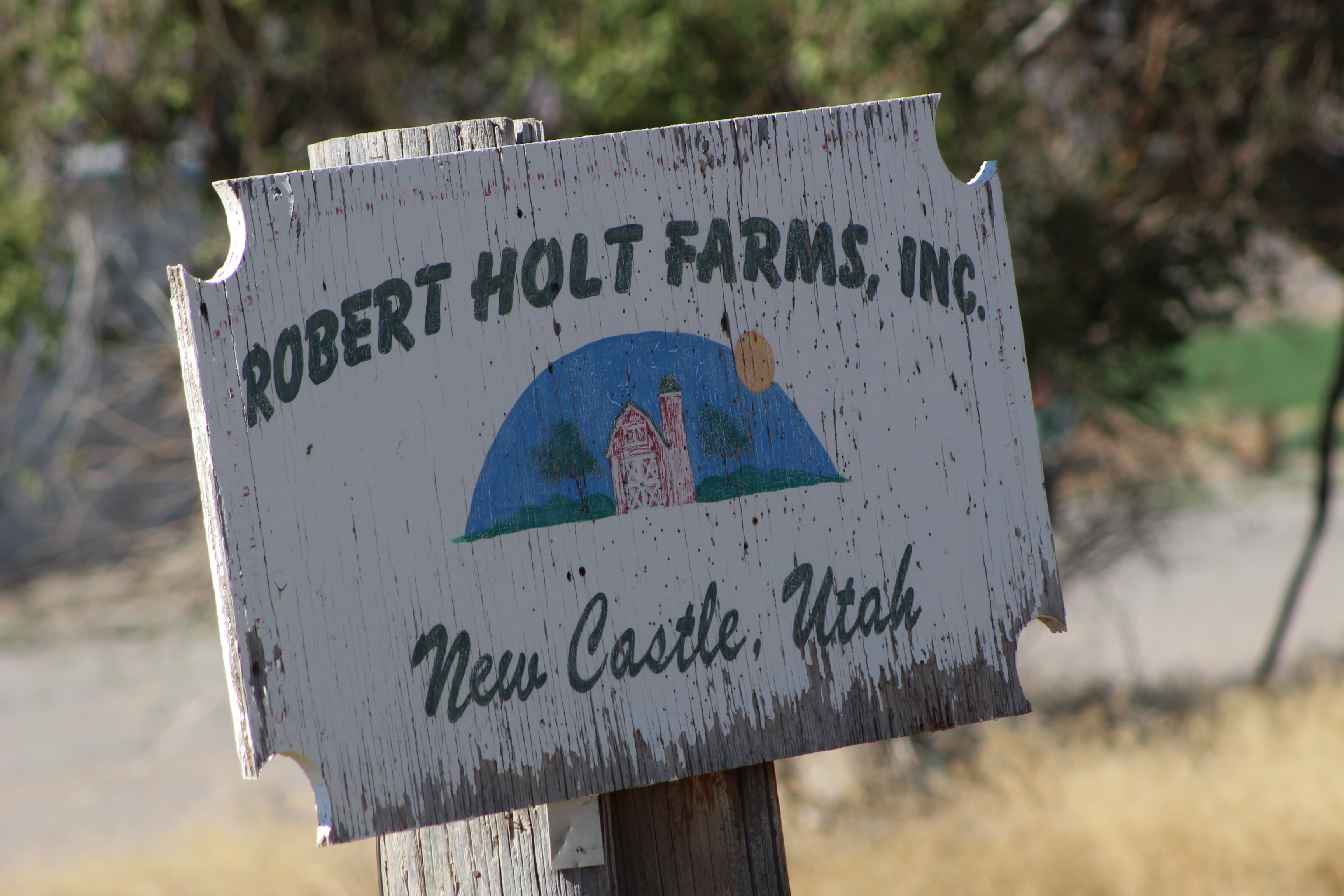 The west end of Iron County is home to the largest business district in the county. Robert Holt owns the biggest dairy farm in all of Southern Utah. Iron County, Utah, July 15, 2016 | Photo by Tracie Sullivan, St. George / Cedar City News