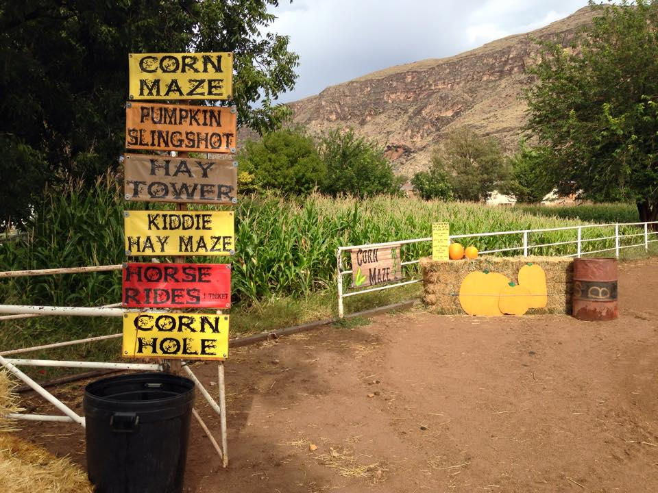 Entrance to the Corn Maze at Sleepy Hollow, Western Legacy Farm and Ranch, date unspecified | photo courtesy Western Legacy Farm and Ranch, St. George News