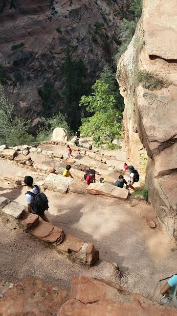 Walter's Wiggles, a scenic set of switchbacks along the Angels Landing Trail