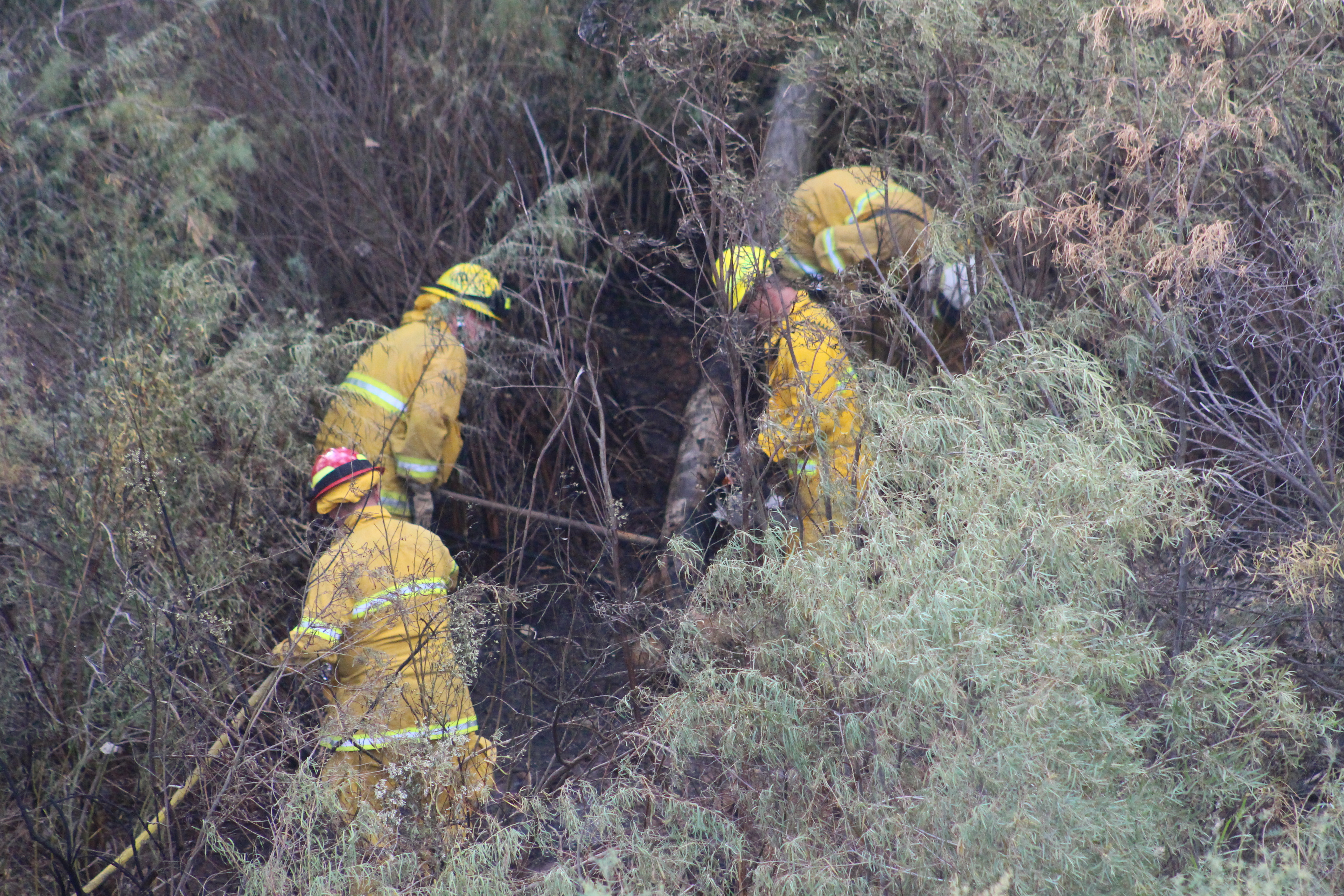 Firefighters extinguish a brush fire in the wash between Lava Flow Drive and Tuweap Drive in St. George Sunday, Oct. 2, 2016 | Photo by Cody Blowers, St. George News