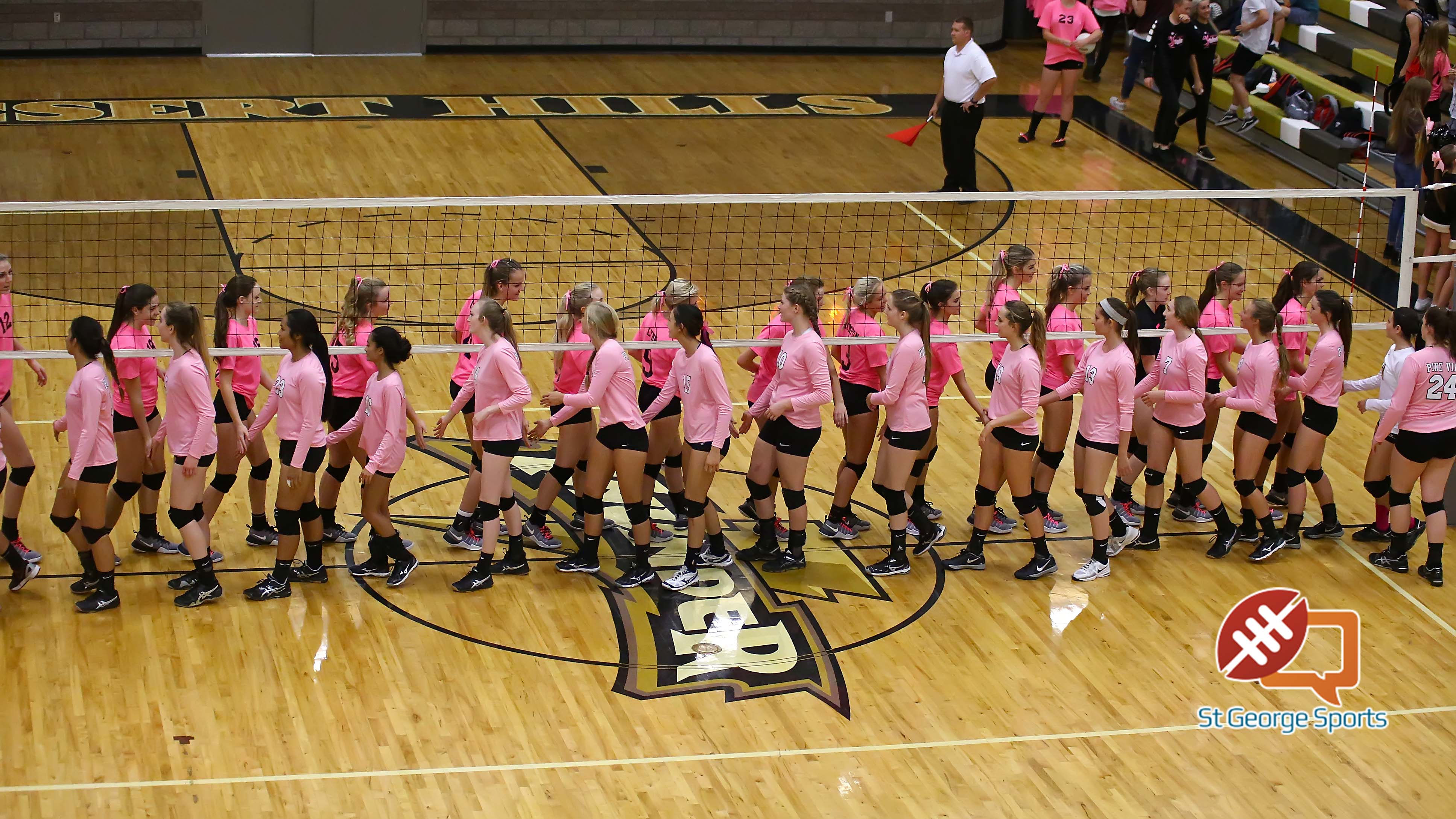 Desert Hills vs. Pine View, Volleyball, St. George, Utah, Oct. 18, 2016, | Photo by Robert Hoppie, ASPpix.com, St. George News